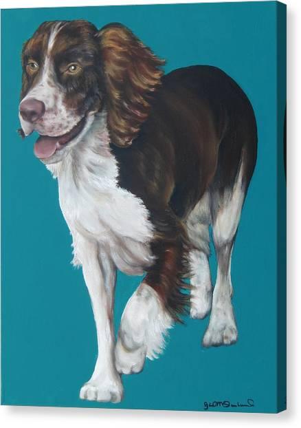 Springer Spaniel Canvas Print by Gail Mcfarland
