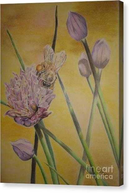 Springtime Glow Canvas Print