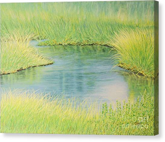 Springtime Marsh-new Beginnings Canvas Print