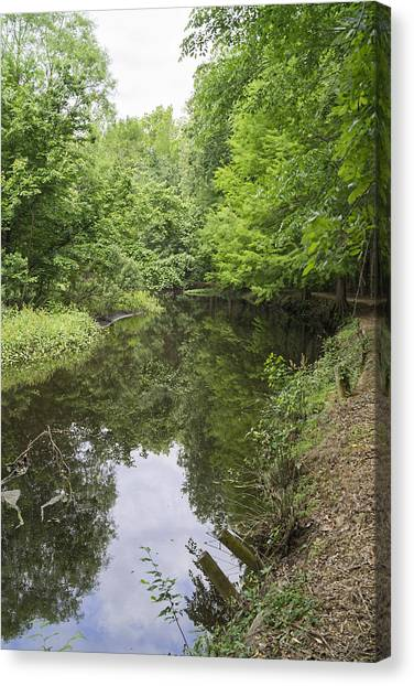Springtime On Jeffries Creek Canvas Print