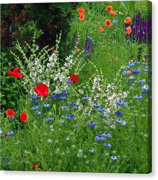 Squarely Spring Floral Garden Canvas Print