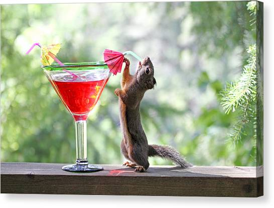 Squirrel At Cocktail Hour Canvas Print