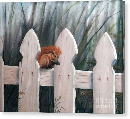 Squirrel Dining On Pine Canvas Print by Stephen Schaps
