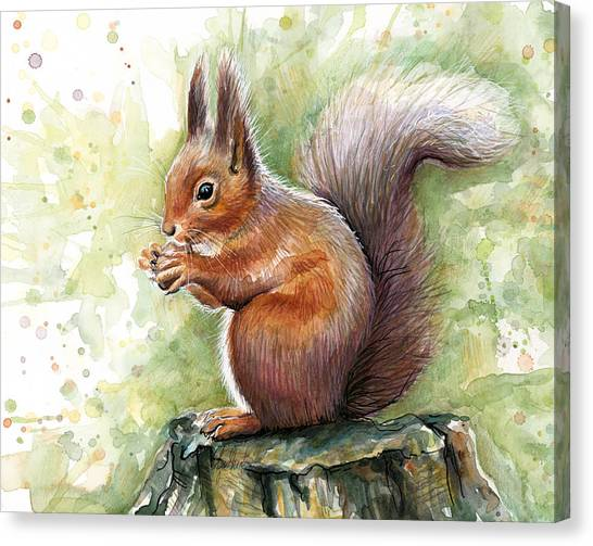 Squirrels Canvas Print - Squirrel Watercolor Art by Olga Shvartsur