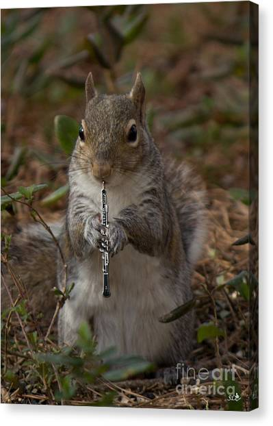 Squirrel With His Obo Canvas Print