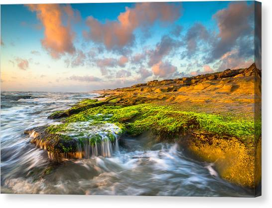 Beach Sunrises Canvas Print - St. Augustine Fl Beach Sunrise - The Coquina Coast by Dave Allen
