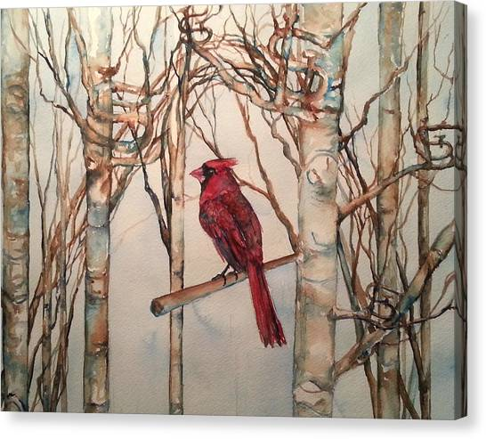 St Louis Cardinal Redbird Canvas Print