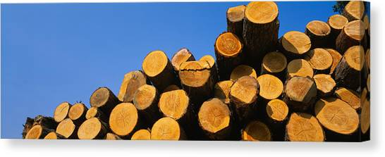 Deforestation Canvas Print - Stack Of Wooden Logs In A Timber by Panoramic Images