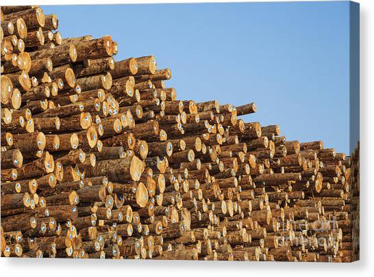 Canvas Print featuring the photograph Stacks Of Logs by Bryan Mullennix