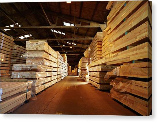 Forklifts Canvas Print - Stacks Of Timber Planks In Large Timber S by Mark Sykes