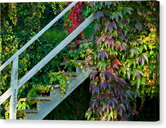 Stairs2 Canvas Print