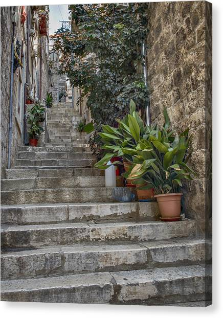Dalmations Canvas Print - Stairway In Dubrovnik by Alan Toepfer