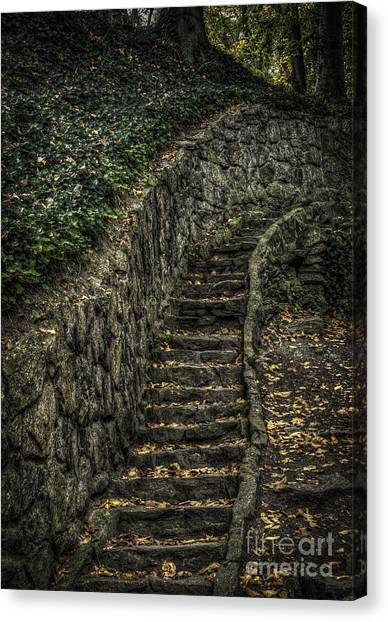 Stairway In The Park Canvas Print