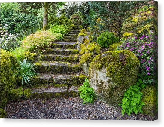 Canvas Print featuring the photograph Stairway To The Secret Garden by Priya Ghose