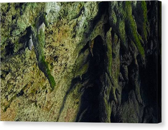 Limestone Caves Canvas Print - Stalactite Diversity At The Camuy Cave System by Sandra Pena de Ortiz