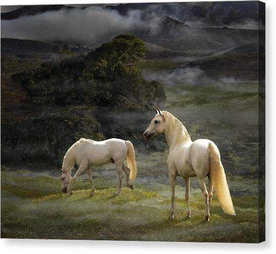 Canvas Print featuring the photograph Stallions Of The Gods by Melinda Hughes-Berland