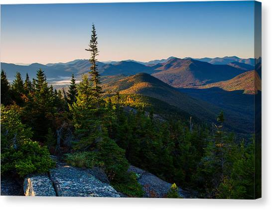 Standing Tall On Mt. Crawford Canvas Print
