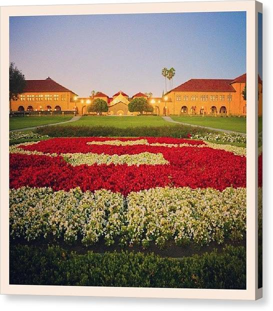 Stanford University Canvas Print - Stanford University by Brandon McClintock
