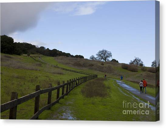 Junior College Canvas Print - Stanford University The Dish Hiking Trail by Jason O Watson