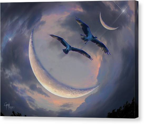 Star Flight Canvas Print