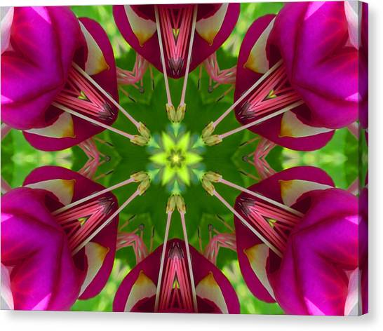 Star Fuchsia 1 Mandala Canvas Print