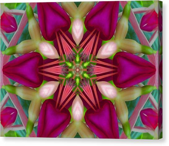 Star Fuchsia 2 Mandala Canvas Print