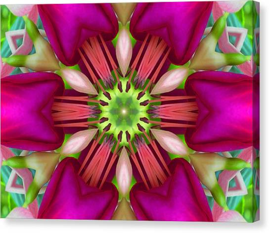 Star Fuchsia 3 Mandala Canvas Print