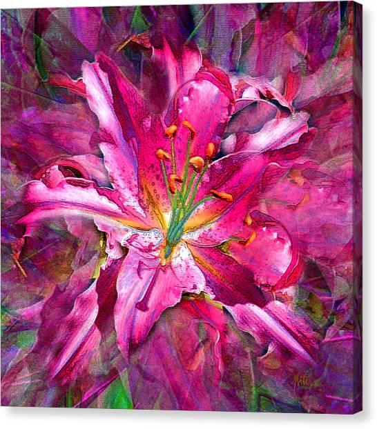 Star Gazing Stargazer Lily Canvas Print