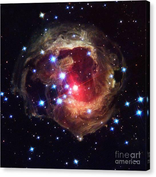 Luminous Body Canvas Print - Star V838 Monocerotis by Science Source
