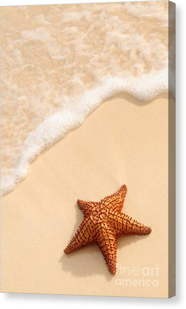 Sands Canvas Print - Starfish And Ocean Wave by Elena Elisseeva
