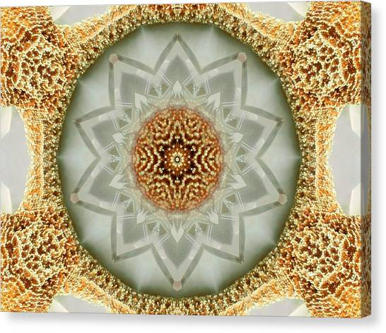 Starfish Crystal Mandala Canvas Print