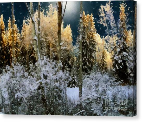 Starshine On A Snowy Wood Canvas Print