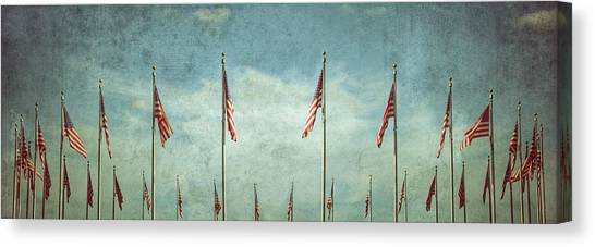 Steadfast Canvas Print