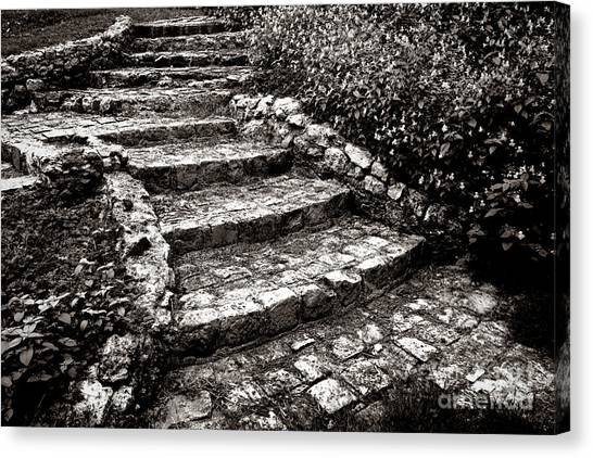 Pavers Canvas Print - Steady Stone Stairs by Olivier Le Queinec