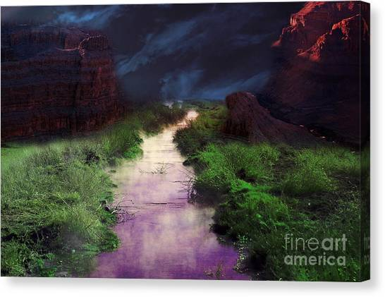 Steamy Creek Canvas Print