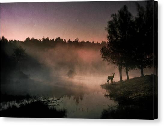 Mood Canvas Print - Steamy Water........... by Wim Schuurmans