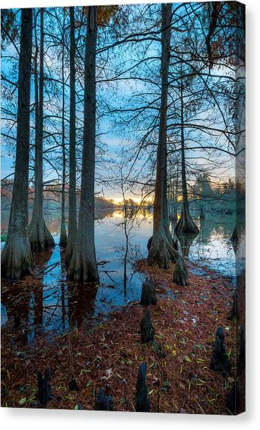 Steinhagen Reservoir Vertical Canvas Print