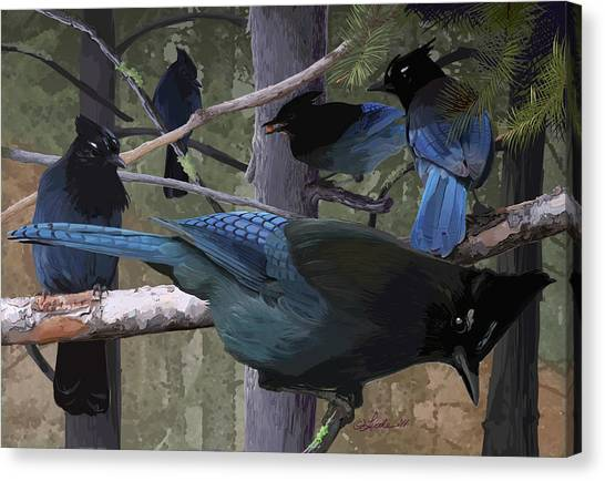 Steller's Jays Canvas Print