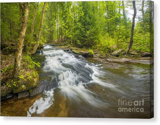 Colette Canvas Print - Step Falls Of Bicknell Brook by Jim Block