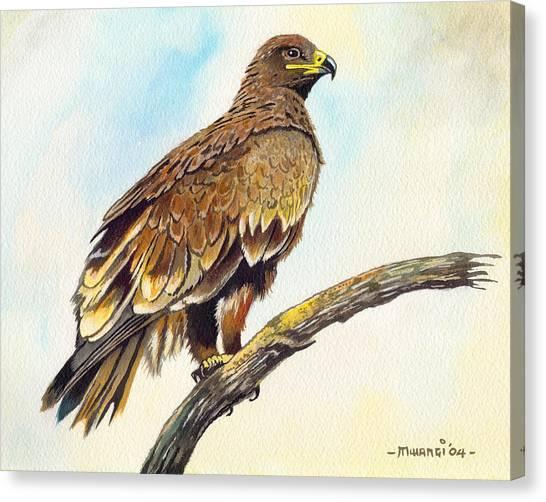 Steppe Eagle Canvas Print