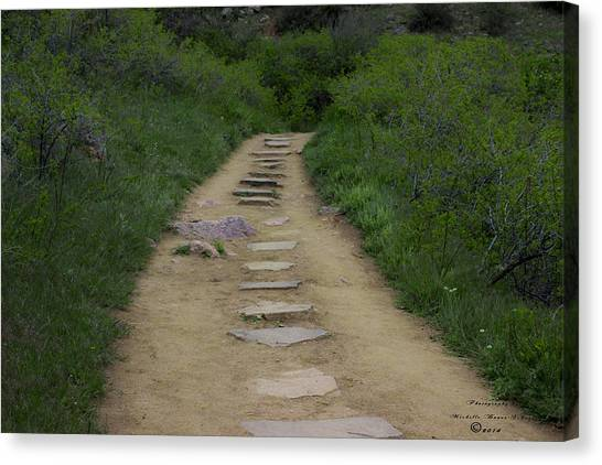Steps Through Nature Canvas Print by Missy Boone