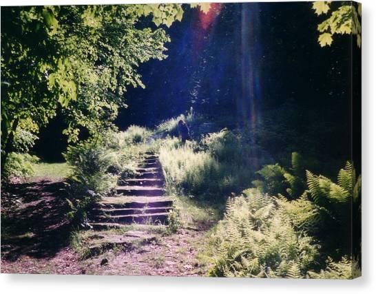 Steps To Madame Sherri Castle Canvas Print by David Fiske