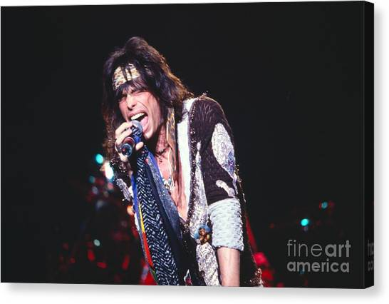 Aerosmith Canvas Print - Steven Tyler by David Plastik