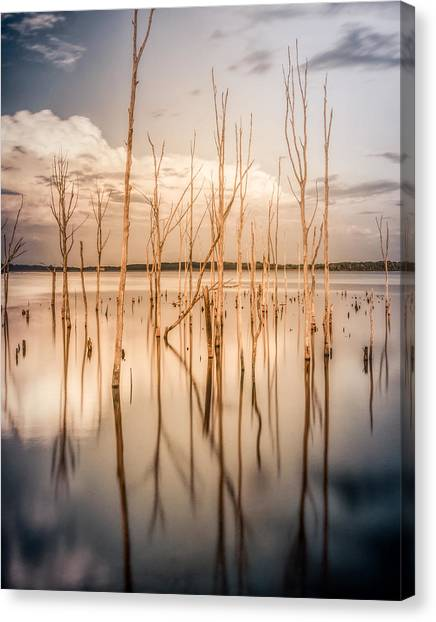 Canvas Print featuring the photograph Sticks by Steve Stanger