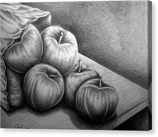 Still Life Drawing Canvas Print