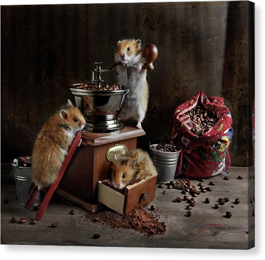 Still Life With A Coffee Grinder, A Bag Canvas Print