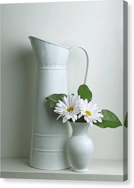 Still Life With Daisy Flowers Canvas Print