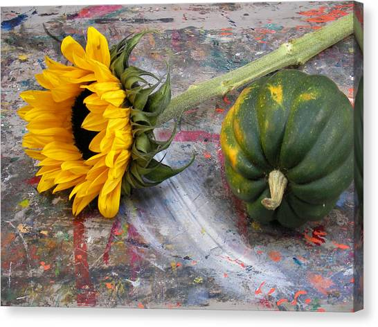 Still Life With Sunflower Canvas Print