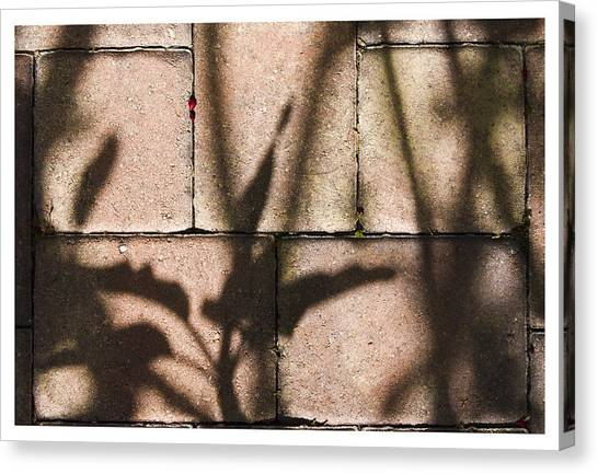 Stone And Light 10 Canvas Print
