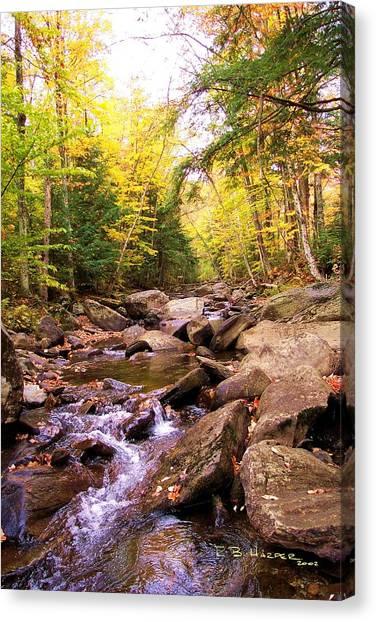 Stone Brook I Canvas Print